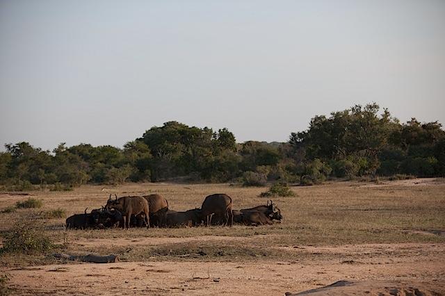 southafrica-139.jpg