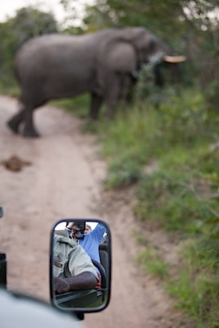 southafrica-28-1.jpg