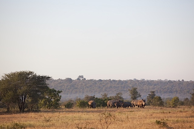 southafrica-57-1.jpg