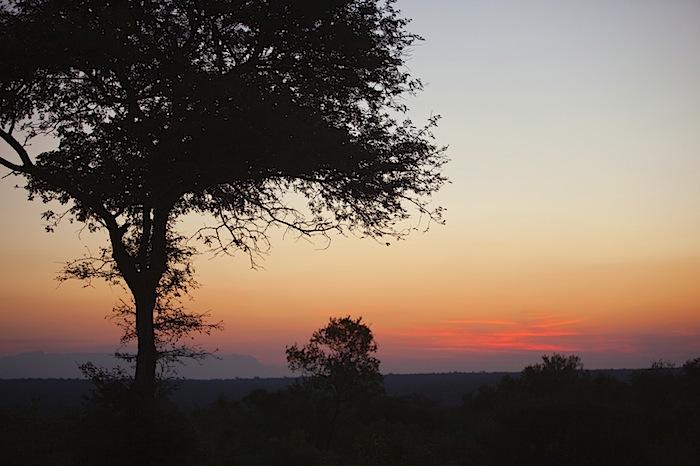 southafrica-98-2.jpg