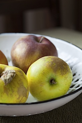 CE Apple Fritters-3.jpg
