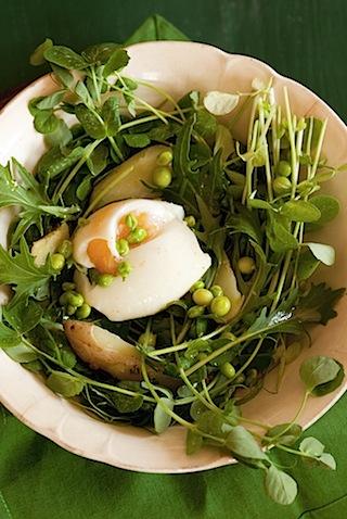 CE Pea Shoot Salad-3.jpg